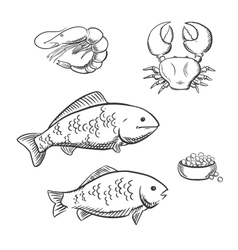 Fish shrimp crab and caviar sketches vector image vector image
