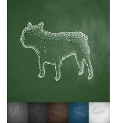 French bulldog icon vector