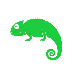 Green chameleon abstract chameleon on white vector