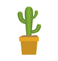 white background with cactus of three branch in vector image
