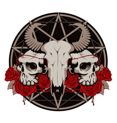 With skulls roses and pentagram vector