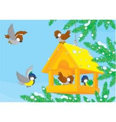 Birdfeeder vector image
