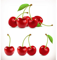 Cherry Sweet fruit 3d icons set Realistic vector image vector image