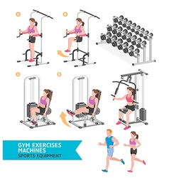 Gym exercises machines sports equipment vector image