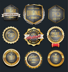 luxury golden design badges and labels collection vector image
