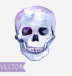 Watercolor skull background vector image