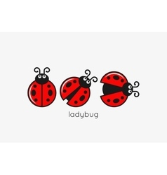 Ladybug logo set on white design background vector