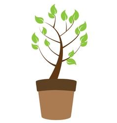 green plant tree vector image