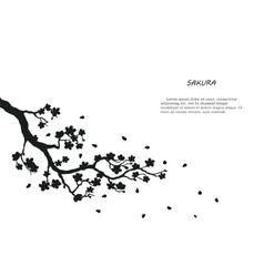 Black silhouette of sakura on a white background vector