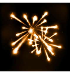 Fireworks in night sky vector image
