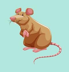Brown rat standing alone vector