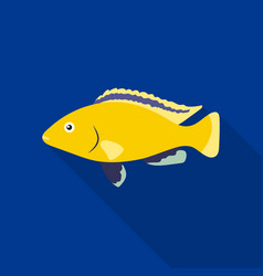 Cichlid hummingbird fish icon flat singe aquarium vector