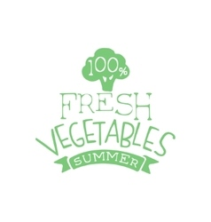 Fresh Vegetables Summer Calligraphic Cafe Board vector image vector image