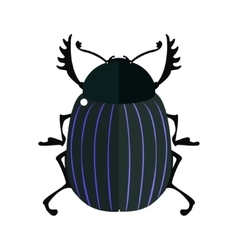 Scarab bug vector