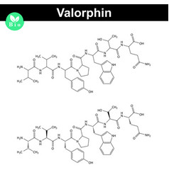 Valorphin biochemical compound opioid peptide vector