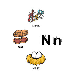 Alphabet letter n-note nut nest vector