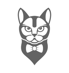 Portrait of Hipster Cat with Bow Tie Isolated on vector image