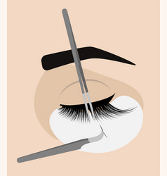 Procedure for eyelash extension master tweezers vector