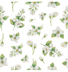 watercolor seamless pattern of flowers and vector image vector image