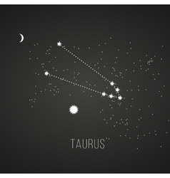 Astrology sign taurus on chalkboard background vector