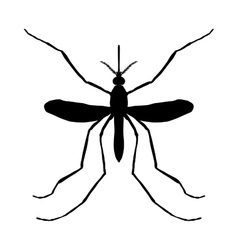 Insect silhouette insect a realistic mosquito vector