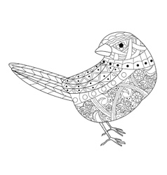 Sparrow coloring book for adults vector