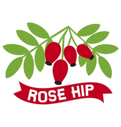 red rose hip symbol vector image vector image