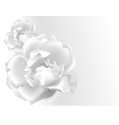 White rose from paper template greeting card vector