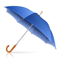 Blue Umbrella vector image