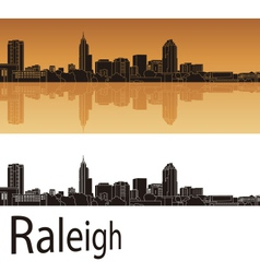 Raleigh skyline vector image