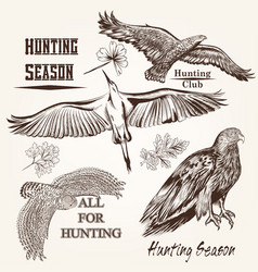 collection of hand drawn birds vector image vector image