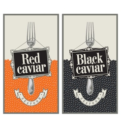 red and black caviar vector image vector image