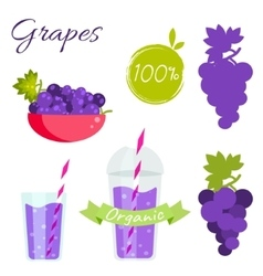 Grapes fruit and juice set vector