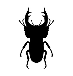 Insect silhouette stag-beetle lucanus cervus vector
