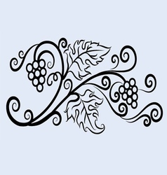 Grape ornament vector
