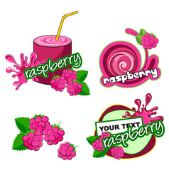 Raspberry label background vector