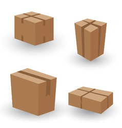 Collection box packaging collection box packaging vector