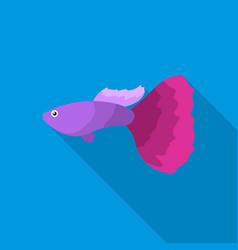guppy fish icon flat singe aquarium fish icon vector image vector image