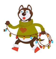 Husky dog in warm sweater and boots carries long vector