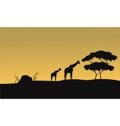 Silhouette of giraffe and tree vector