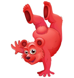 A red bear doing a handstand vector image vector image