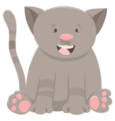 Kitten or cat cartoon character vector