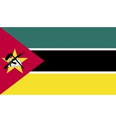 Mozambique flag image vector