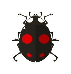 Ladybird in flat style vector