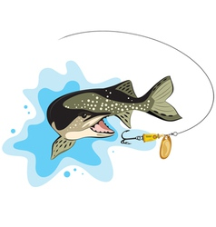 Pike and lure fishing vector image