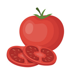 tomato with a leafburgers and ingredients single vector image vector image
