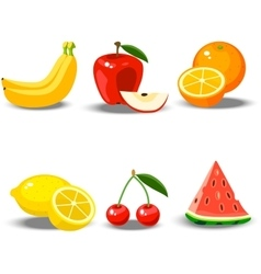 A fruit set vector