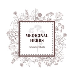 Medicine plant decorative background vector