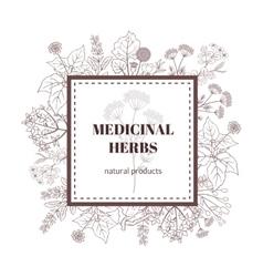 Medicine plant decorative background vector image
