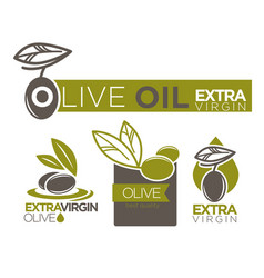 olive oil extra virgin flat logotypes set on white vector image